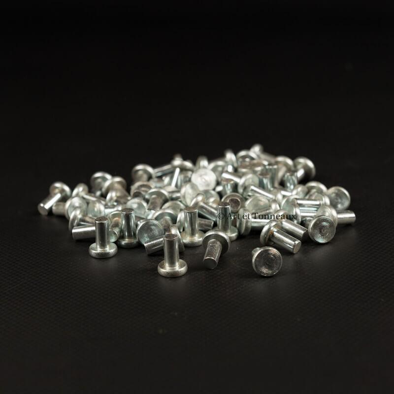 Rivets zinc tête plate 6x12mm - 100 pièces