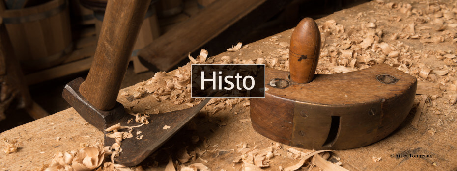 Histo