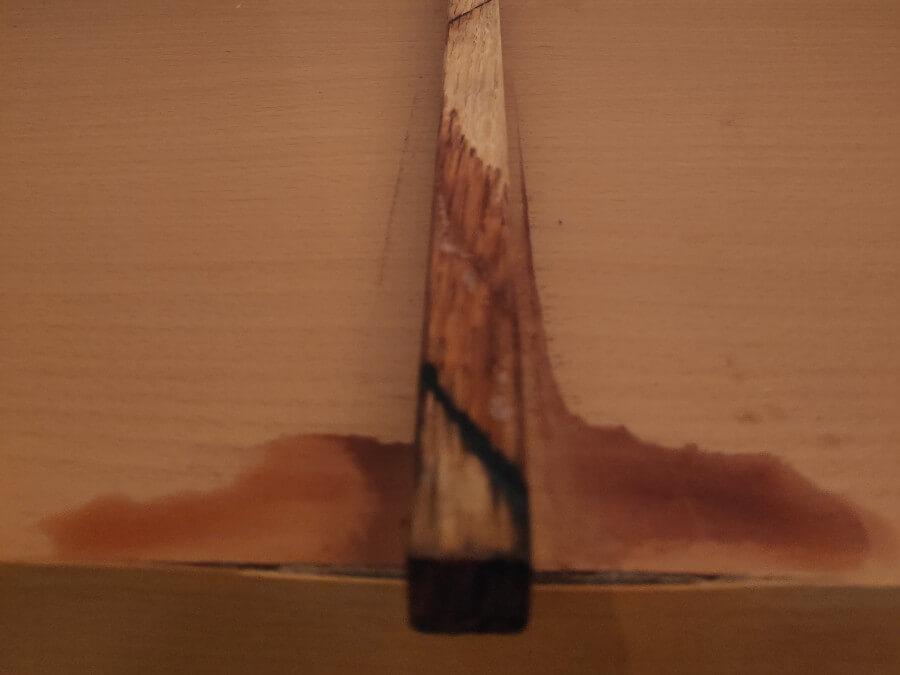 La flaque sous le vinaigrier